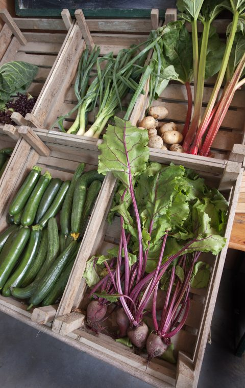 het groenteschap verandert steeds van kleur.